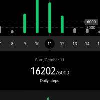 Screenshot_20201018-133209_Samsung Health
